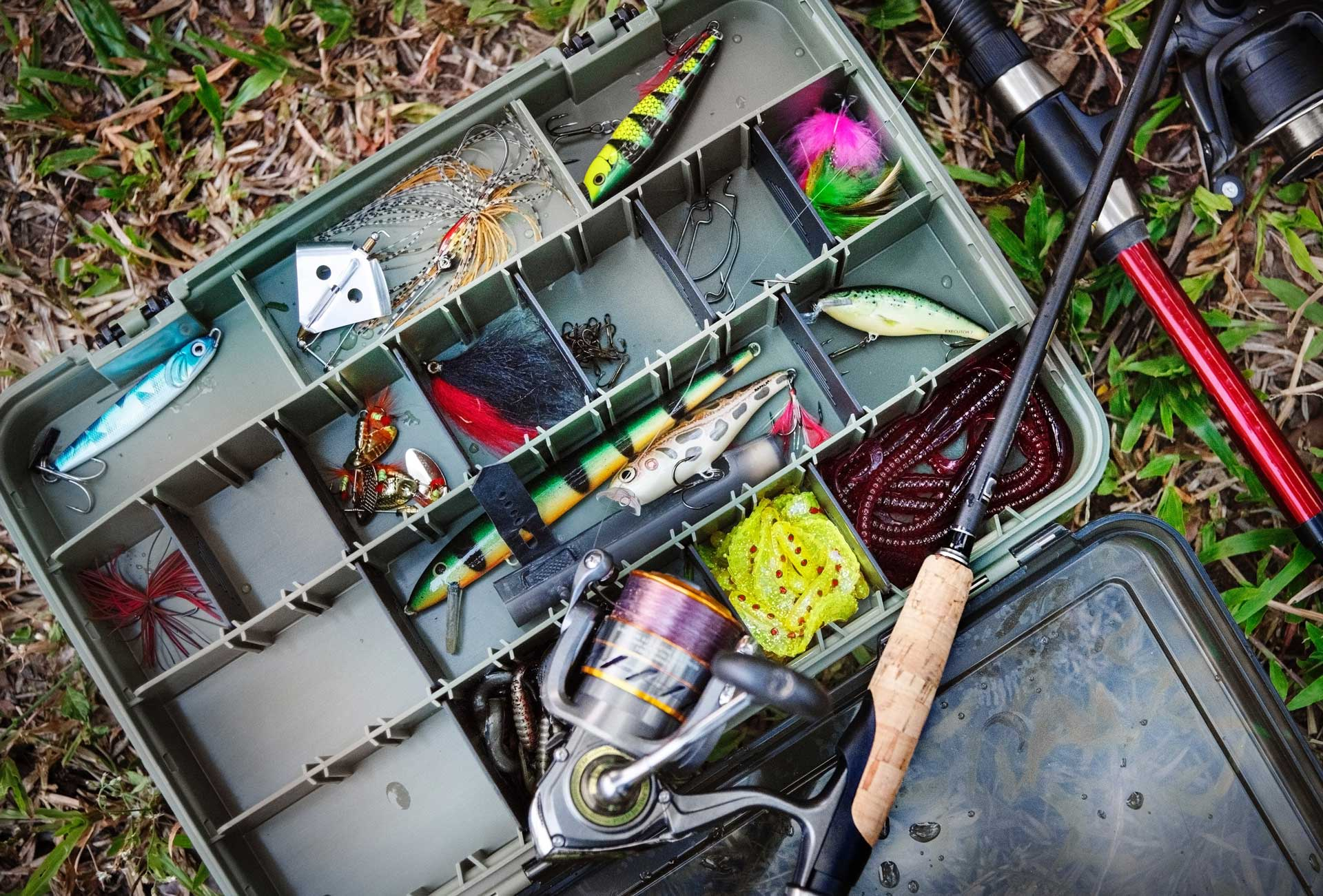 best freshwater lures